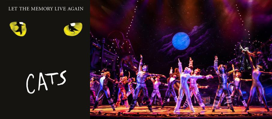 Cats at Saroyan Theatre
